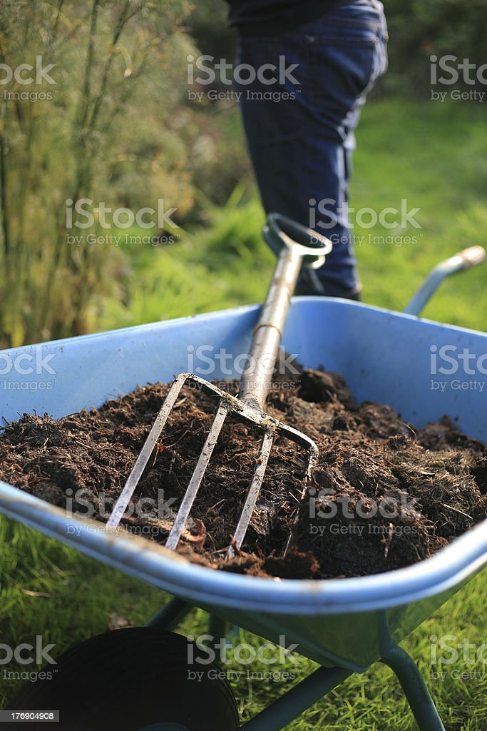 The Organic kitchen gardener royalty-free stock photo