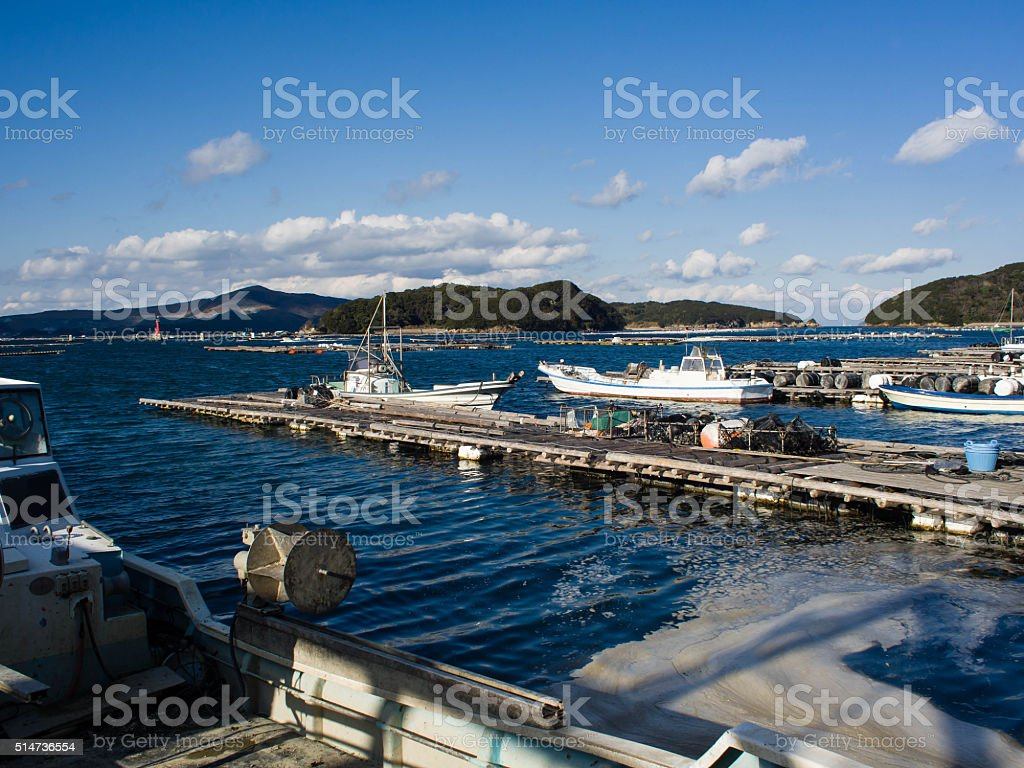 The oyster farm in Japan stock photo