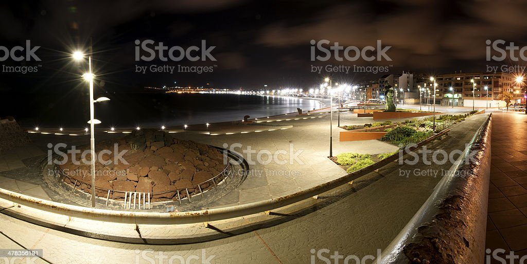 Las palmas royalty-free stock photo