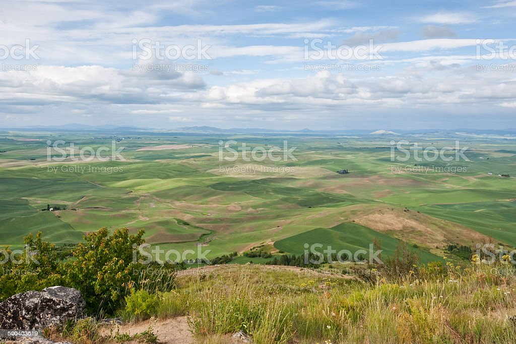 Palouse Overview royalty-free stock photo