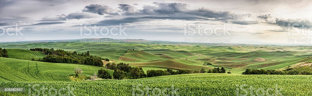 The Palouse Rolling Hills stock photo