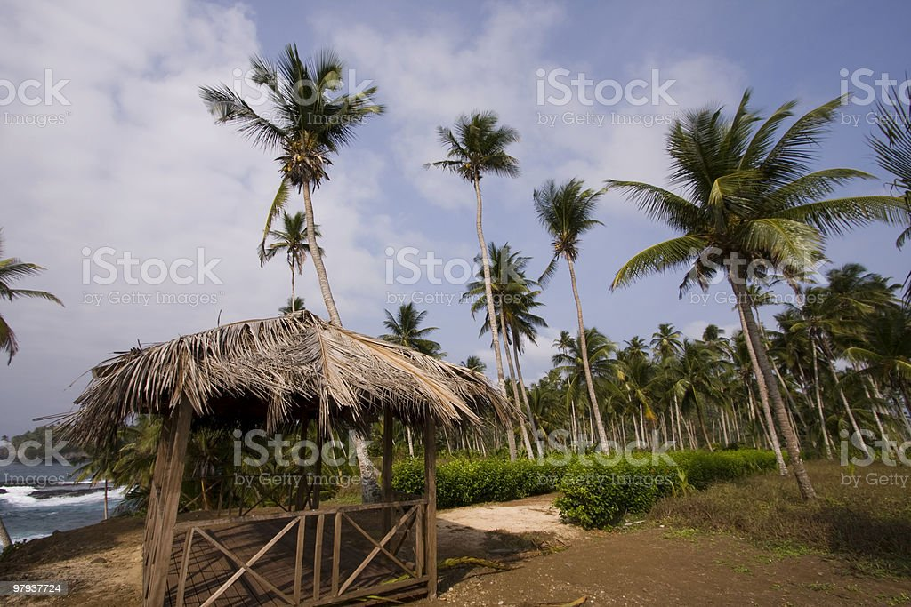 The paradise stock photo
