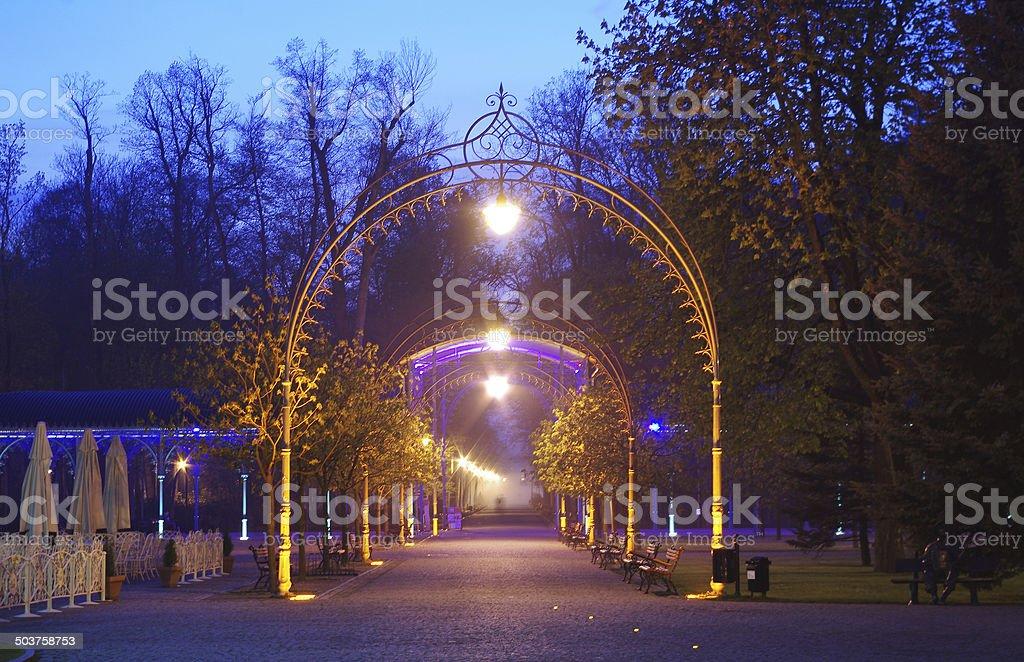 the park gate in Kudowa Zdroj, Poland, at night stock photo