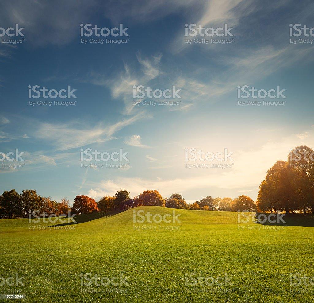 The Park royalty-free stock photo