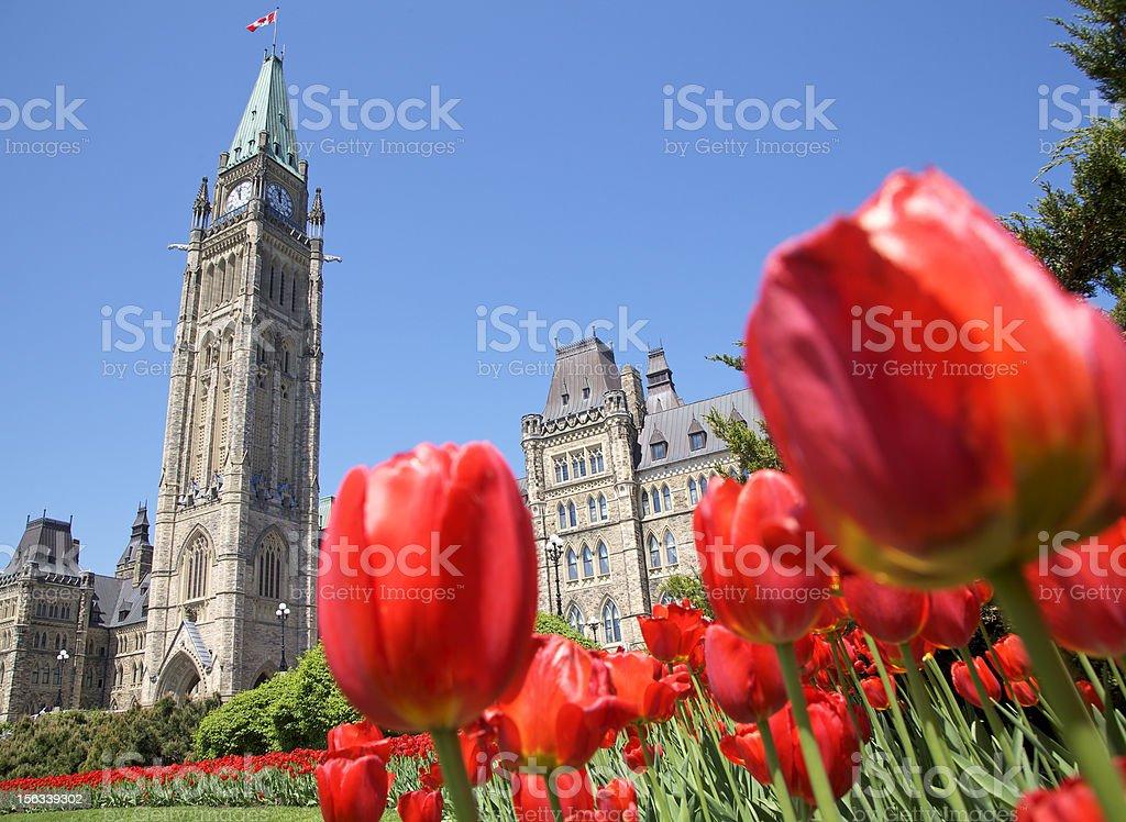 The Parliament of Canada, Tulip Festival, Ottawa stock photo