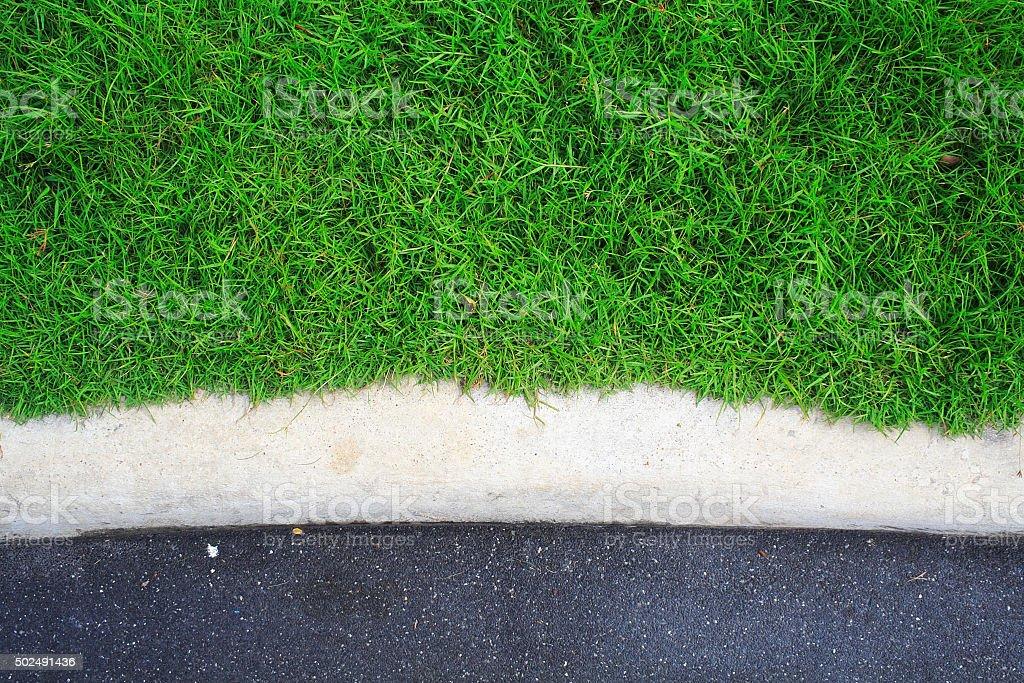 The part of green grass garden stock photo