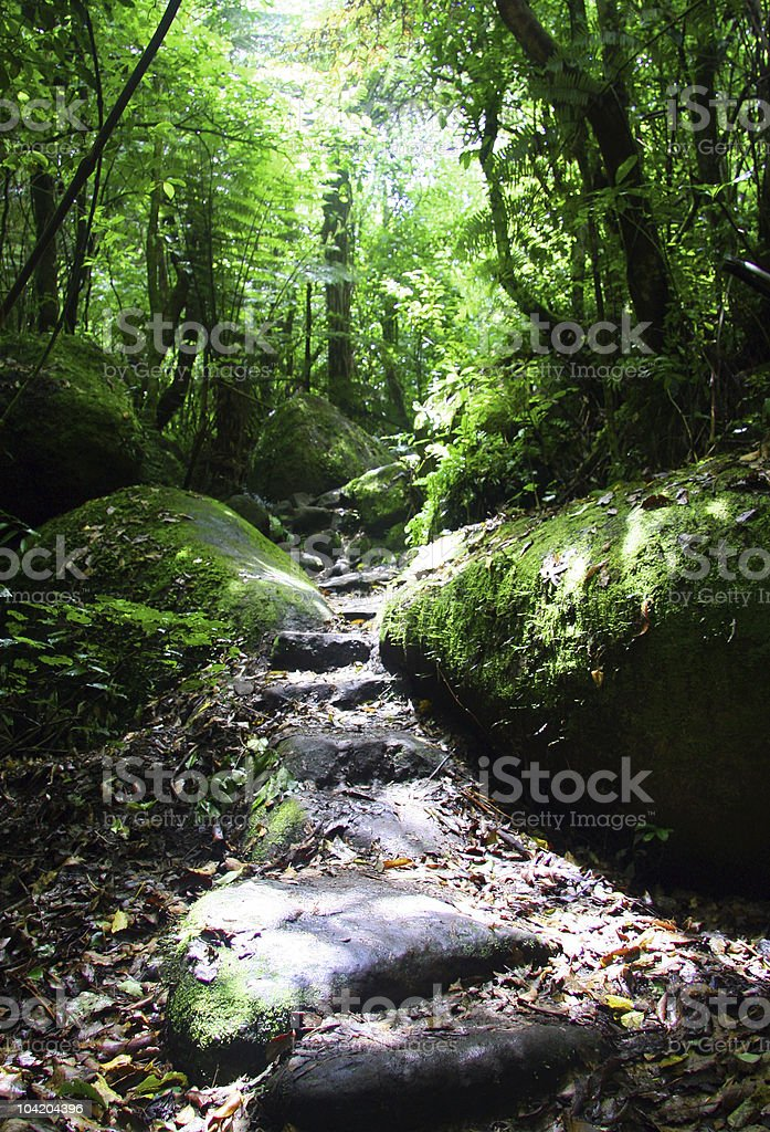 The path to enlightenment royalty-free stock photo