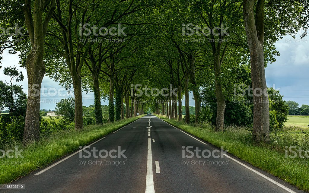 The path to joy royalty-free stock photo