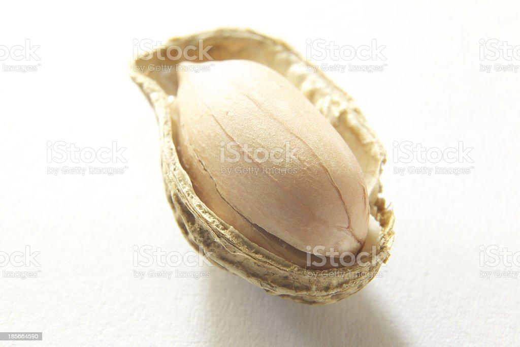 The Peanut royalty-free stock photo
