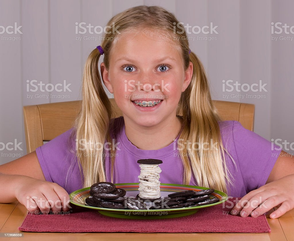 The Perfect Cookie royalty-free stock photo