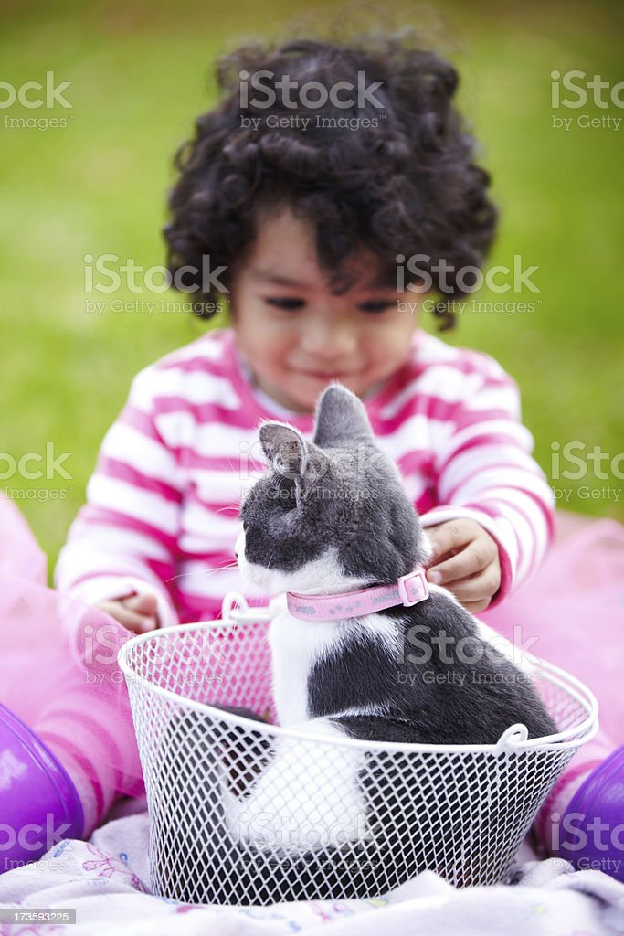The perfect pet royalty-free stock photo