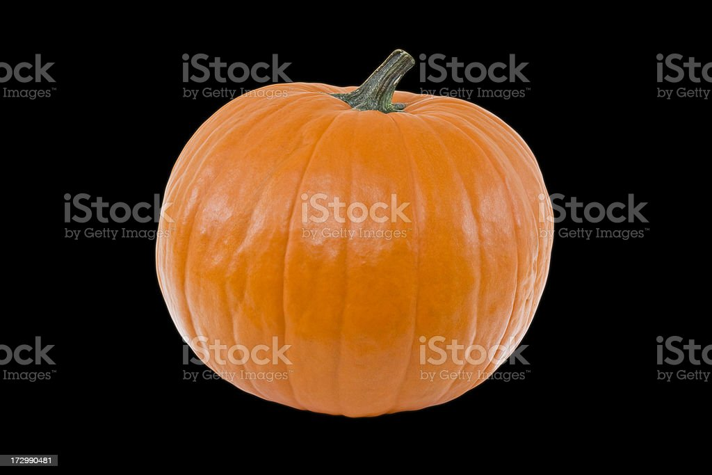 The Perfect Pumpkin Black Background stock photo
