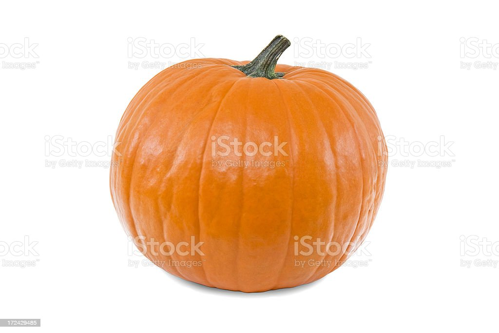 The Perfect Pumpkin: White Background royalty-free stock photo