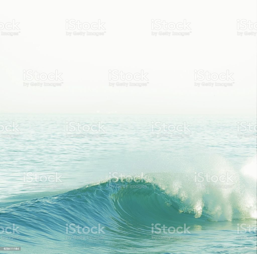 The Perfect Wave stock photo