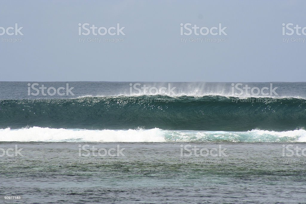 The perfect wave royalty-free stock photo