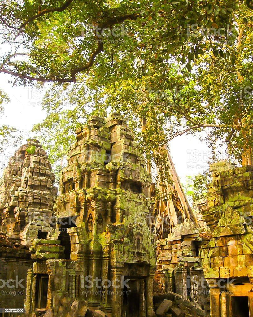 The picture of Ta Prohm Temple, Angkor in Cambodia stock photo