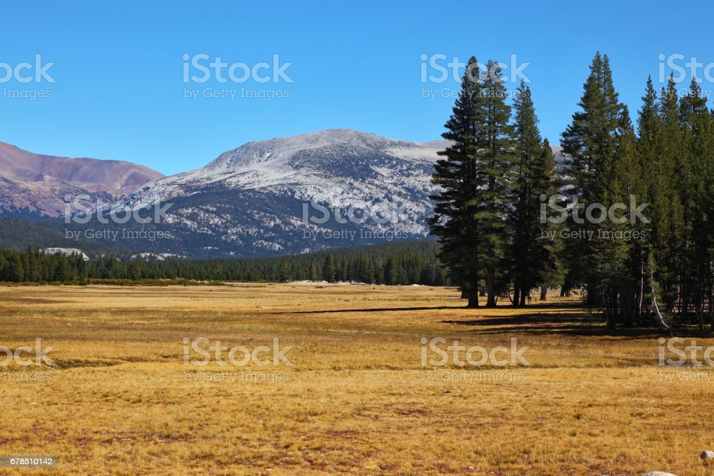 The picturesque part of Yosemite Park stock photo