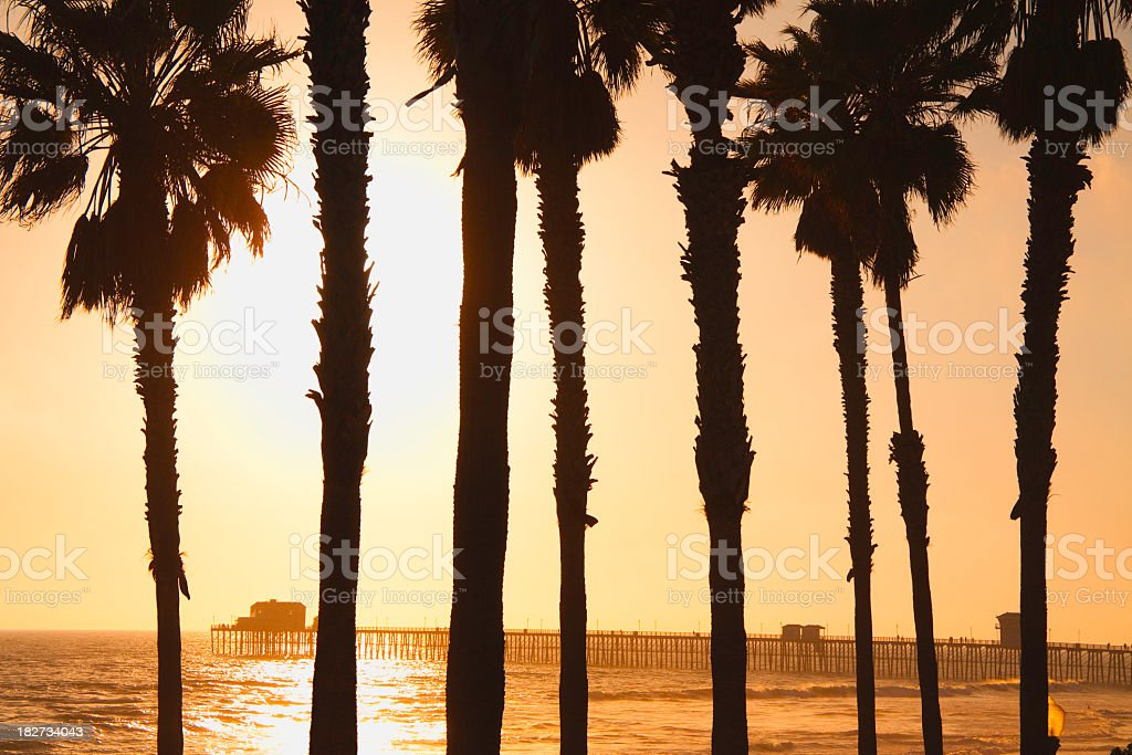 The Pier And Palm Trees at Oceanside Calif. royalty-free stock photo