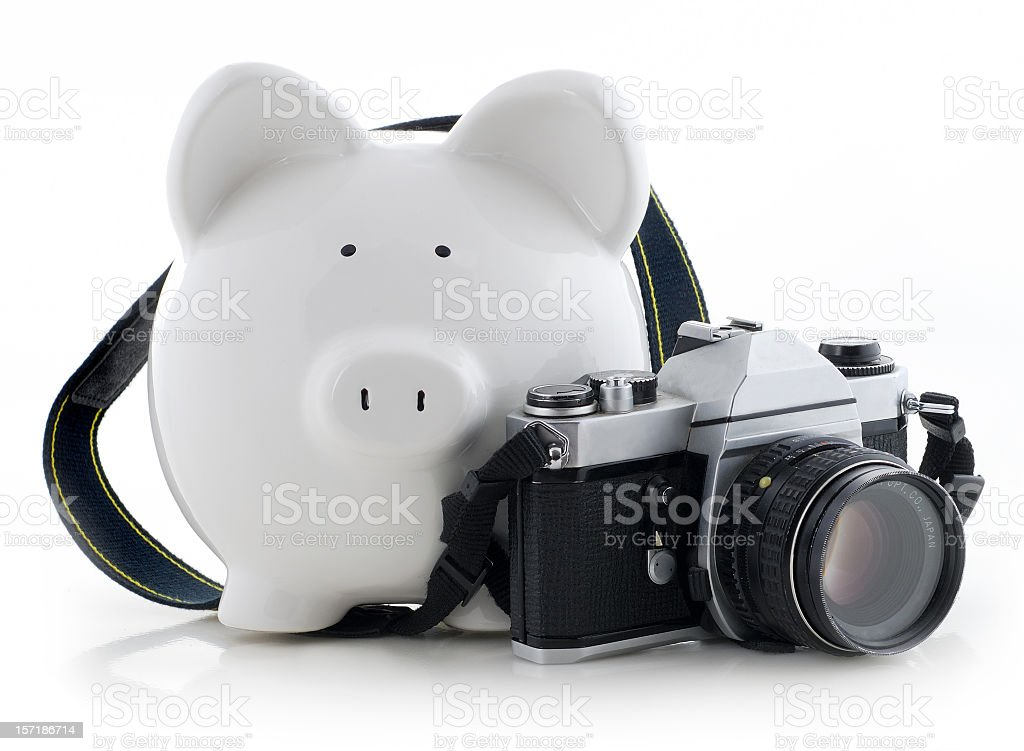 the pigarazzi stock photo