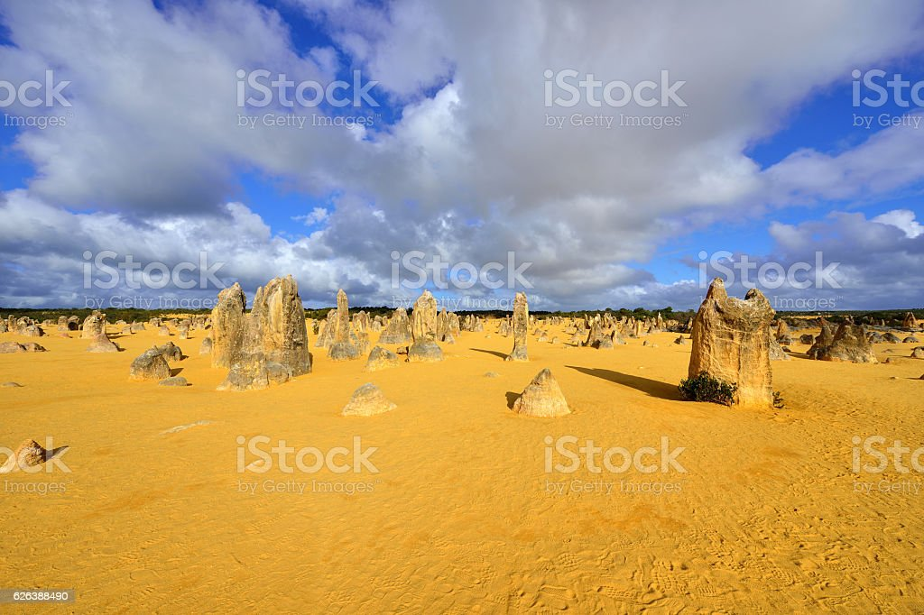The Pinnacles Desert, Western Australia stock photo