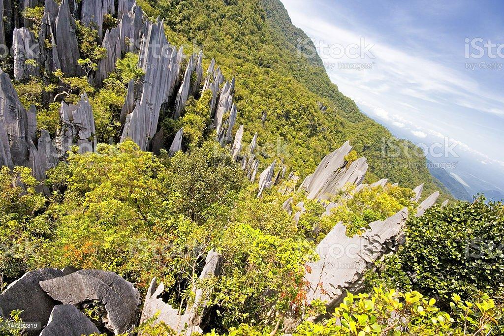 The Pinnacles, Malaysian Borneo royalty-free stock photo