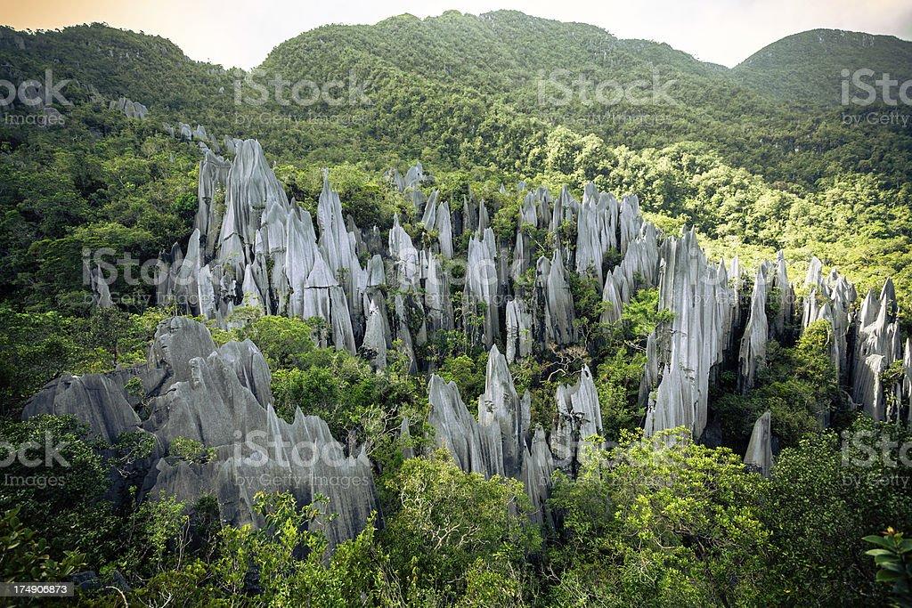 The Pinnacles Rock Formation at Gunung Mulu National Park stock photo