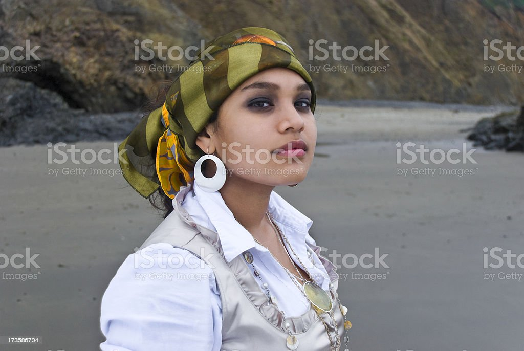 The Pirate royalty-free stock photo