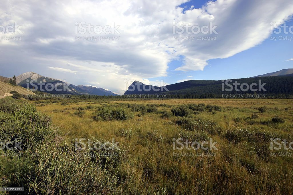 The Plains (Series-one) royalty-free stock photo