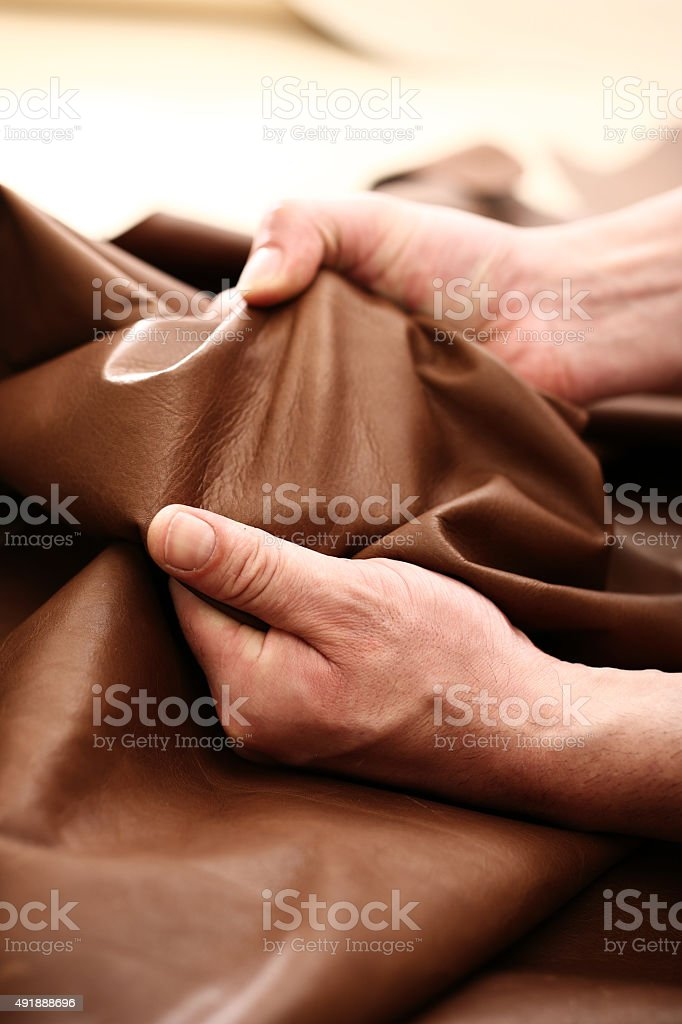 The plant leather craftsman. stock photo
