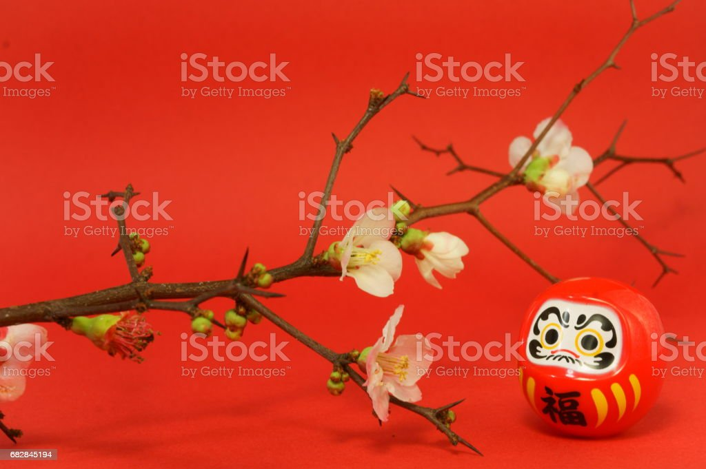 The plum blossoms and Daruma as Japanese spring image stock photo