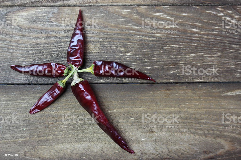 The pods of red hot pepper stock photo