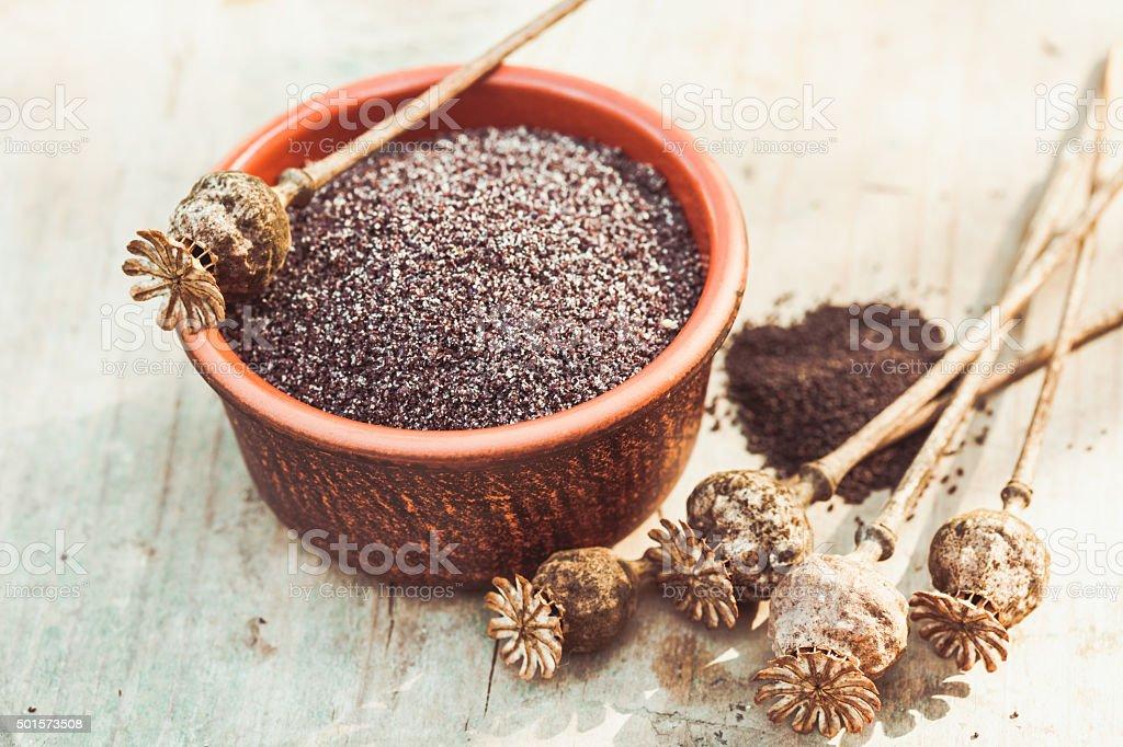 The poppy seeds stock photo