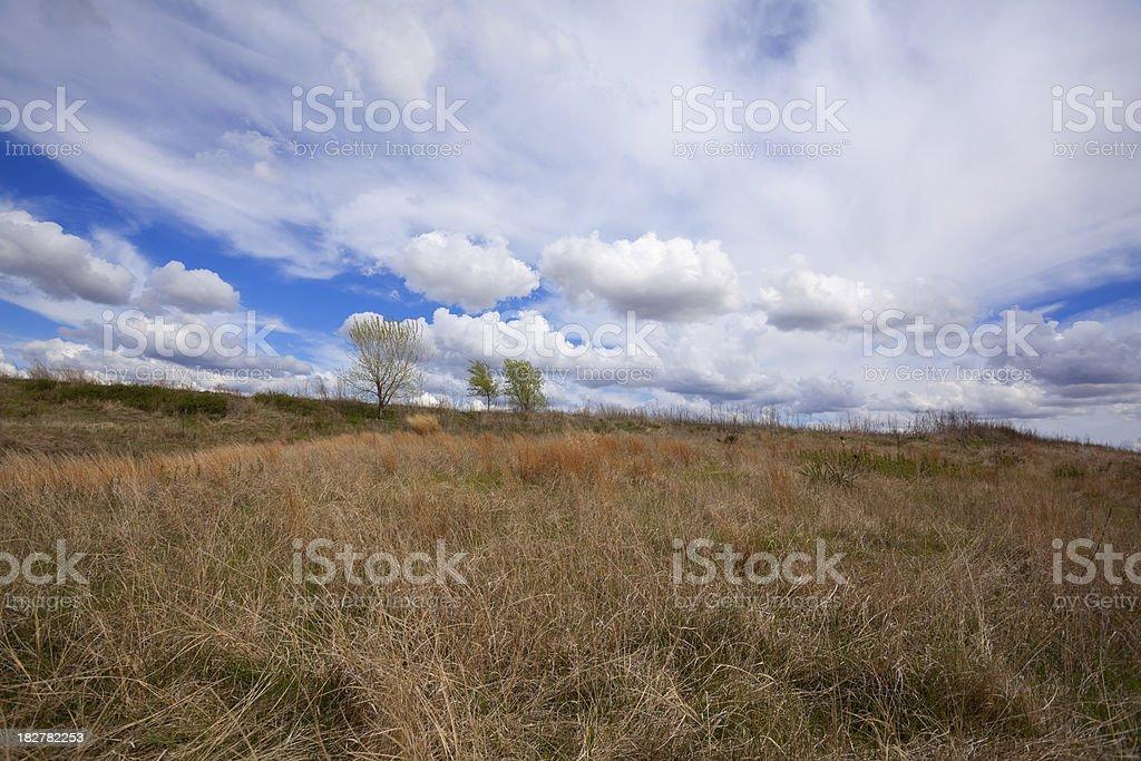 The Prairies royalty-free stock photo