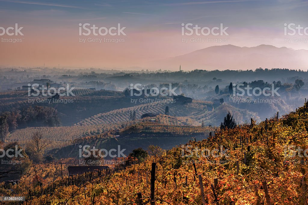 the Prosecco hills stock photo
