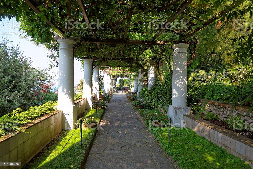 The public gardens of the Villa San Michele, Capri, Italy stock photo
