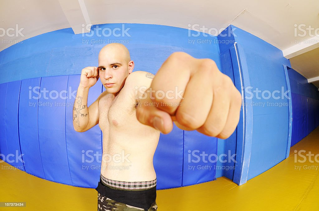 The Punch royalty-free stock photo