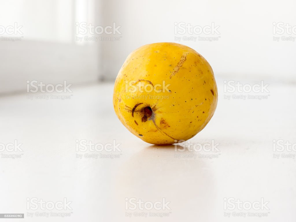 The Quince. stock photo