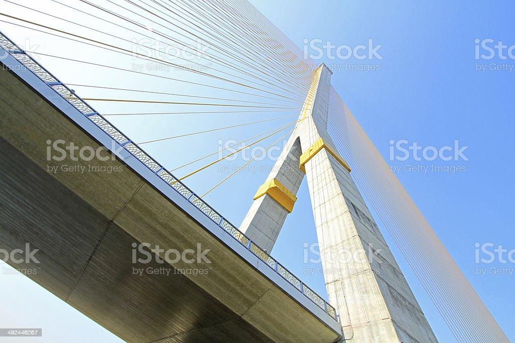 The Rama VIII Cable Bridge,Bangkok,Thailand stock photo