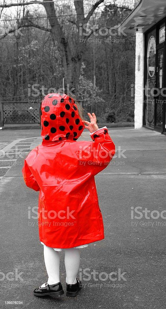 The Red Ladybug Raincoat royalty-free stock photo