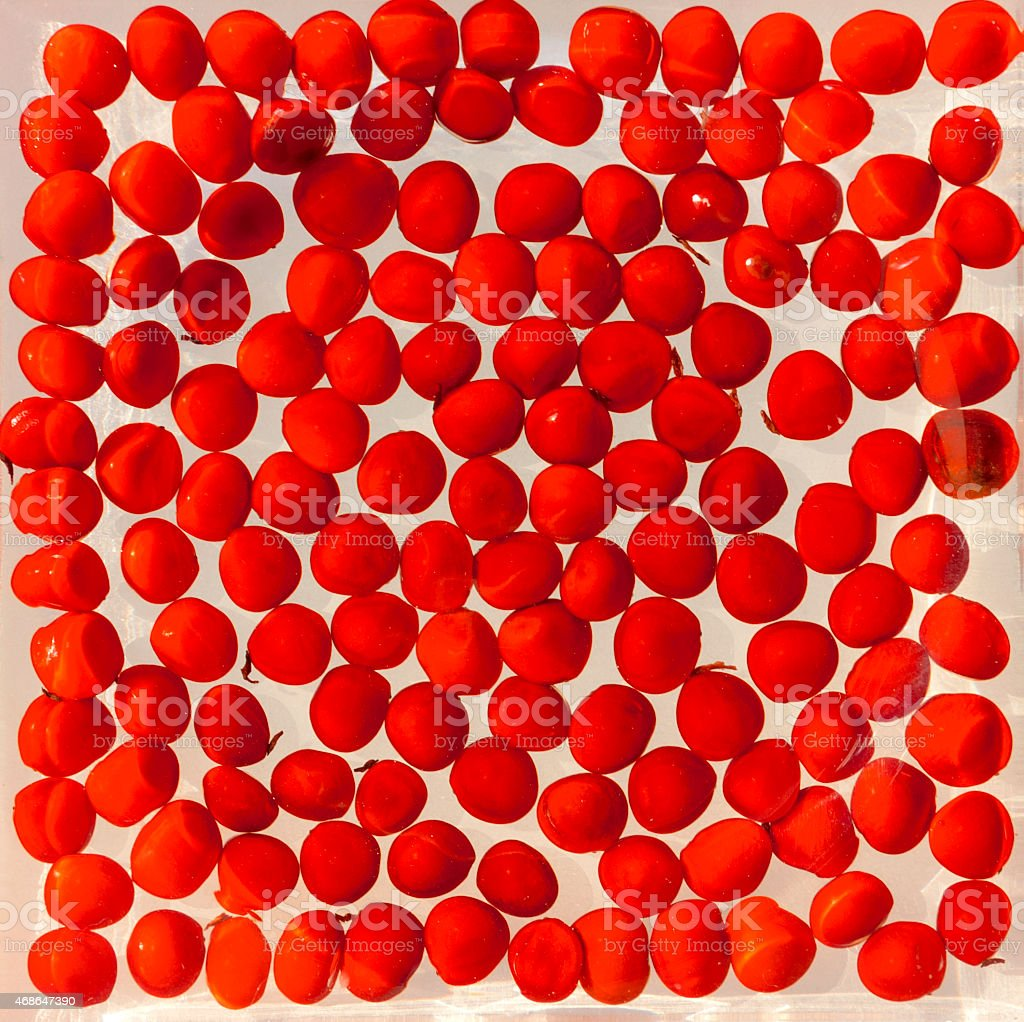 The red seed background royalty-free stock photo