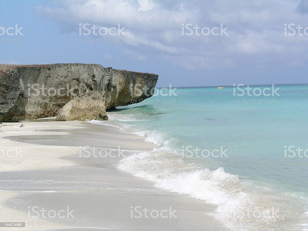The reef royalty-free stock photo