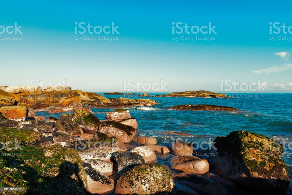 The reef stock photo