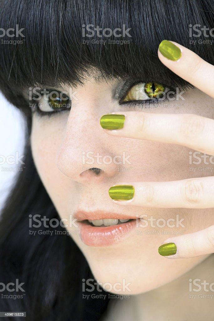 the reptile eye stock photo