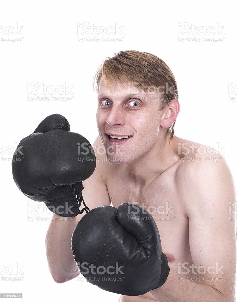 The ridiculous boxer stock photo