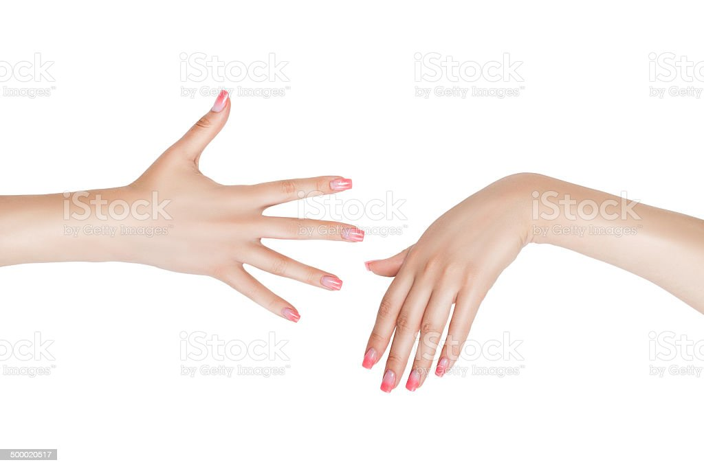 The right and left female hand. stock photo