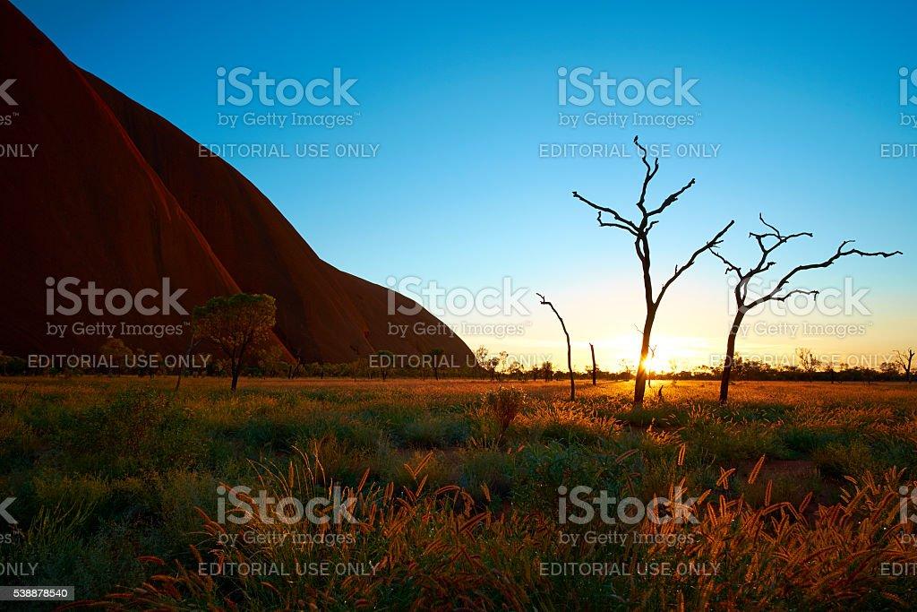 The Rising Sun At Uluru stock photo