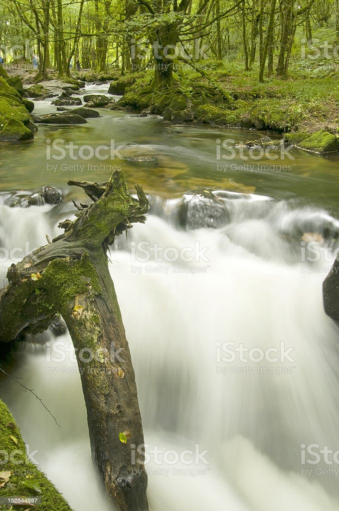 The River Fowey in Cornwall stock photo