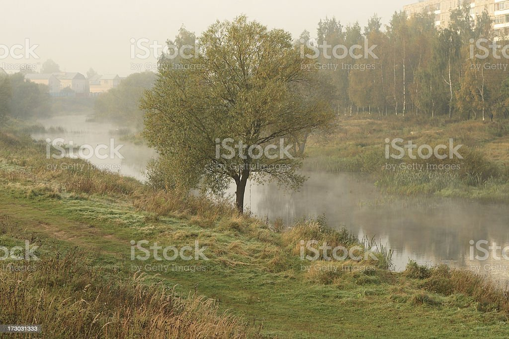 The river in a fog royalty-free stock photo