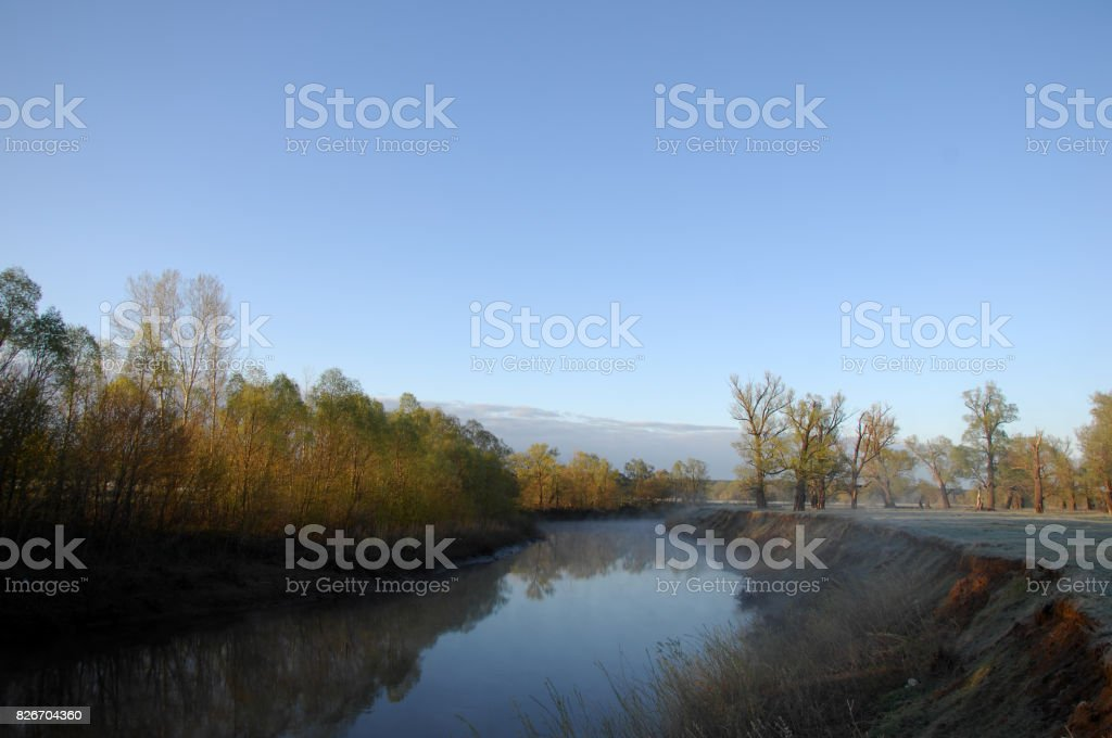 The river in the summer stock photo