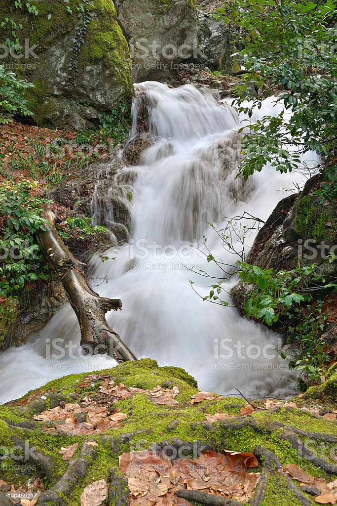 The river wild royalty-free stock photo